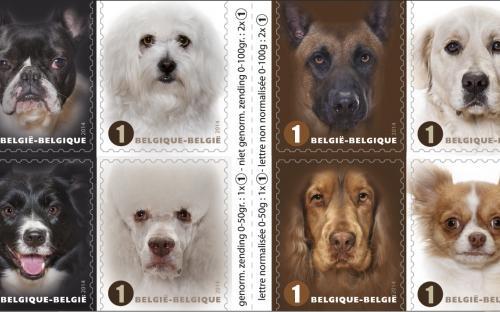 27 januari: Honden naderbij - Het postzegelboekje