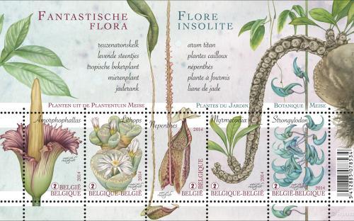 27 januari: Fantastische Flora - Het volledige vel