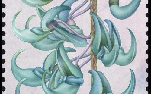 27 januari: Fantastische Flora (Jadedrank)