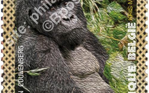 22 augustus: Bedreigde diersoorten, Gorilla