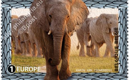 22 augustus: Bedreigde diersoorten, Olifant