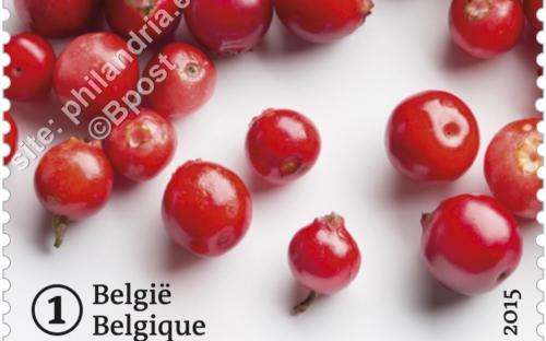 29 juni: Vergeten fruit (Veenbessen)
