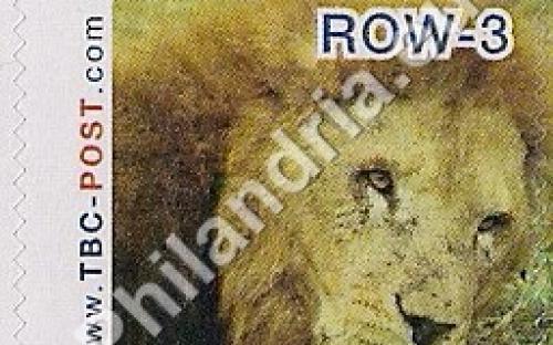 23 mei: ROW-3: Leeuw 5