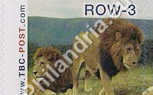 23 mei: ROW-3: Leeuw 6
