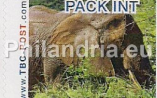 6 november: PACK-INT: Olifant 6