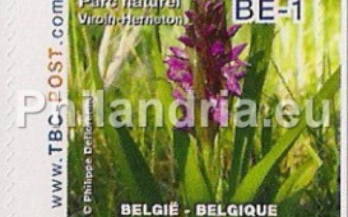 15 oktober: BE-1: Parc Naturel Viroin-Hermeton