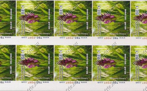 15 oktober: BE-1: Parc Naturel Viroin-Hermeton (Vel van 10)