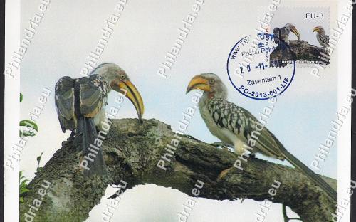 20 november: EU-3: Zuid-Afrikaanse (FDC kaart - 2e stempel)