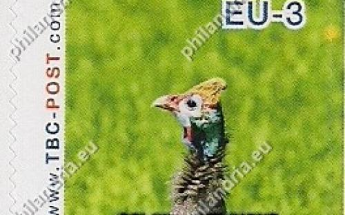 20 november: EU-3: Helmparelhoen (één)