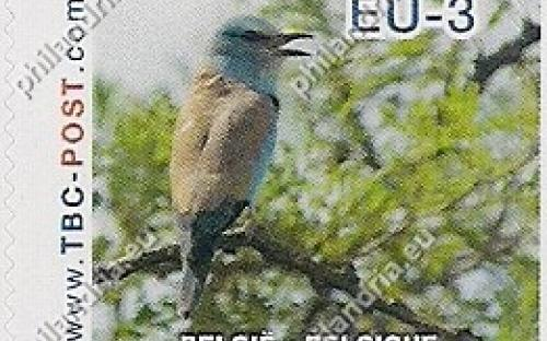 20 november: EU-3: Scharrelaar (groene achtergrond)