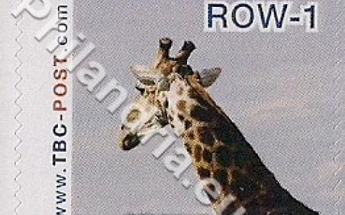 18 februari: ROW-1: Giraf 1