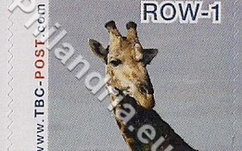 18 februari: ROW-1: Giraf 2