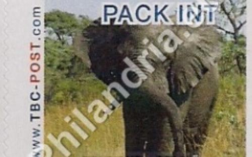 8 november: PACK INT (= KP INTER): Olifant