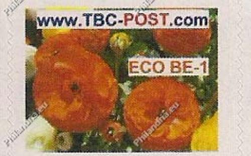 ECO BE-1 (€0.63) - Keukenhof, Ranonkel Asiaticus