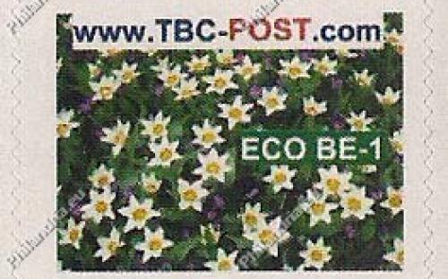 ECO BE-1 (€0.63) - Keukenhof, Tulipa Cretia